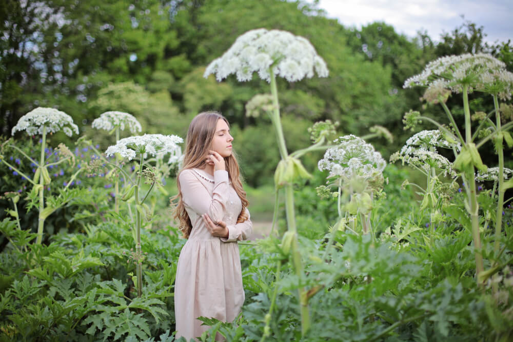 Woman standing next to giant hogweed plants