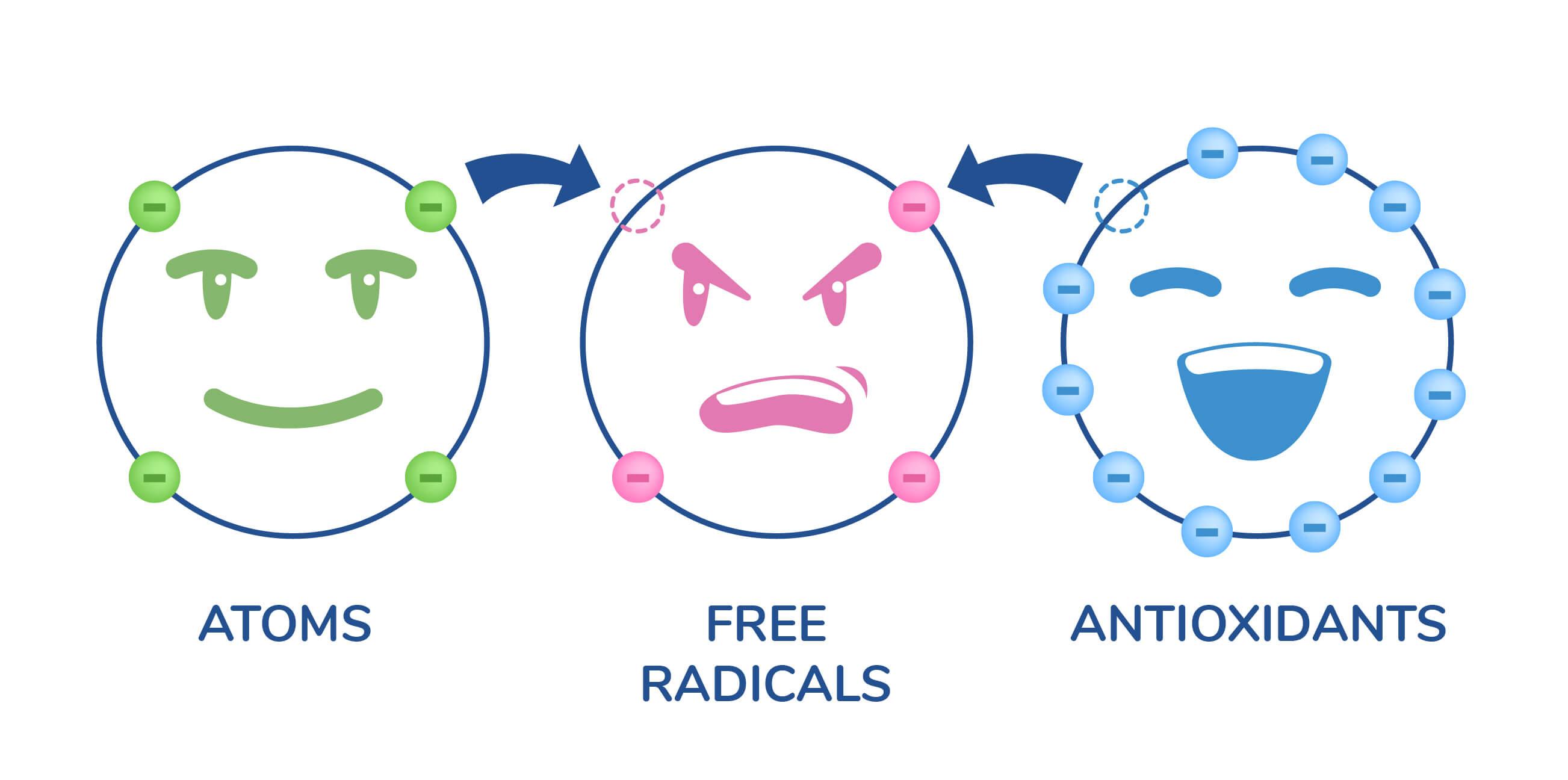 Chart Illustrating Atoms, Free Radicals, Antioxidants